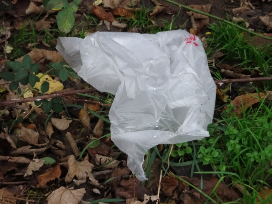 Plastikfolie in der Natur © Paul Bock