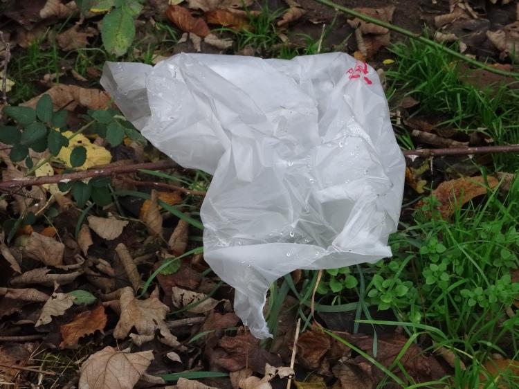 Plastiktüte © oekobeobachter