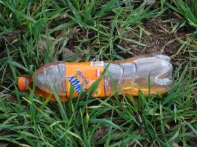 Plastikflasche liegt in der Natur © Paul Bock